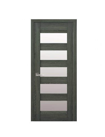 Дверное полотно Бронкс Дуб графит