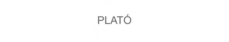 Строительные смеси Plato